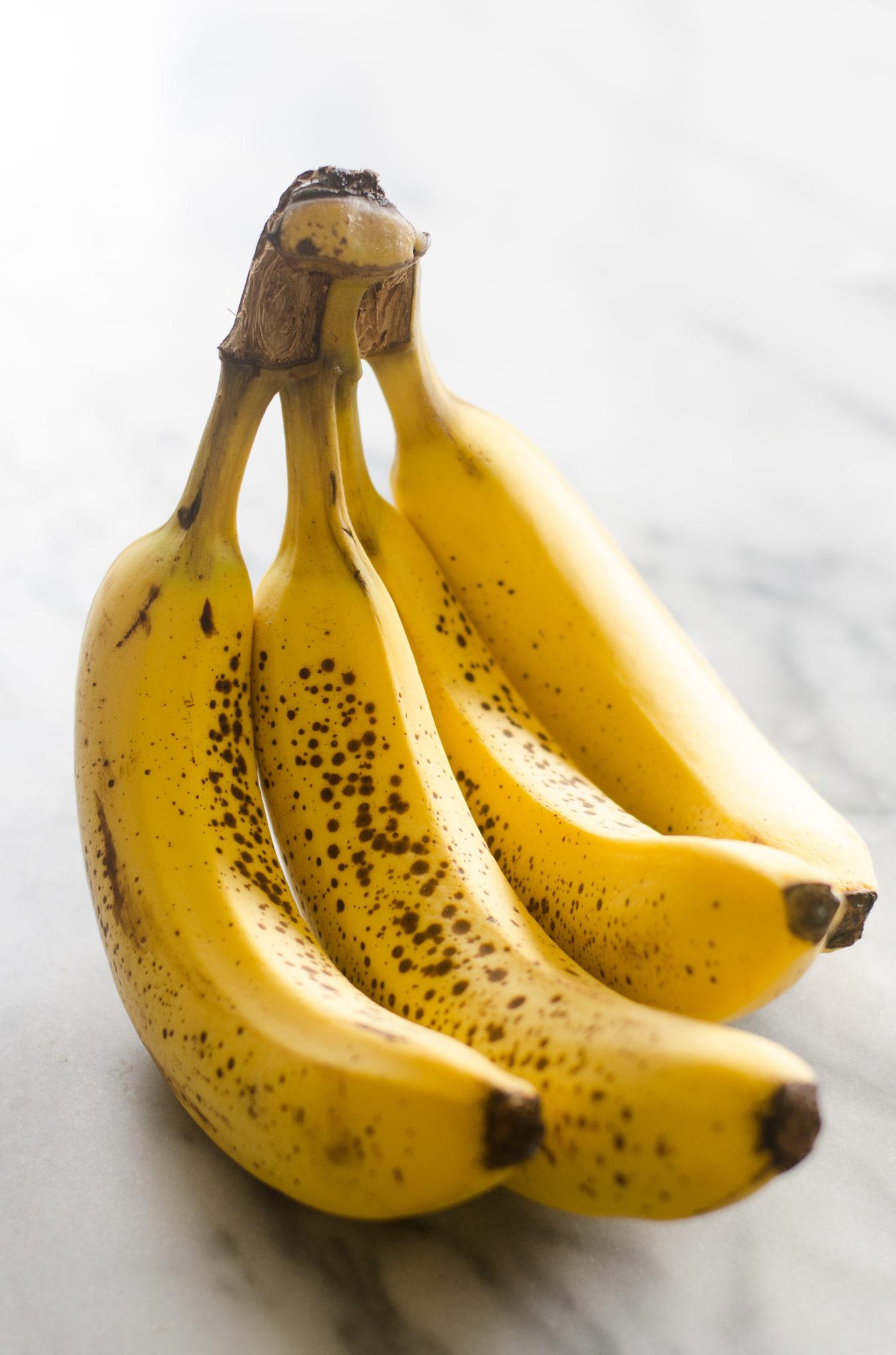 Coconut Flour Banana Bread (Gluten Free, Grain Free, Nut Free, Paleo Friendly, Sugar Free)