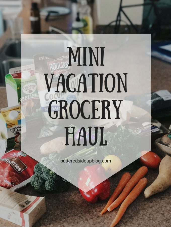 Mini Vacation Grocery Haul + Sugar Free January Update