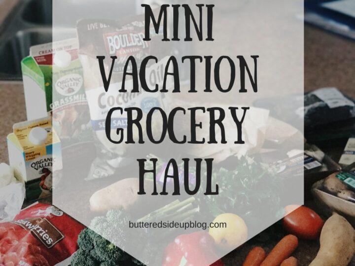 Mini Vacation Grocery Haul