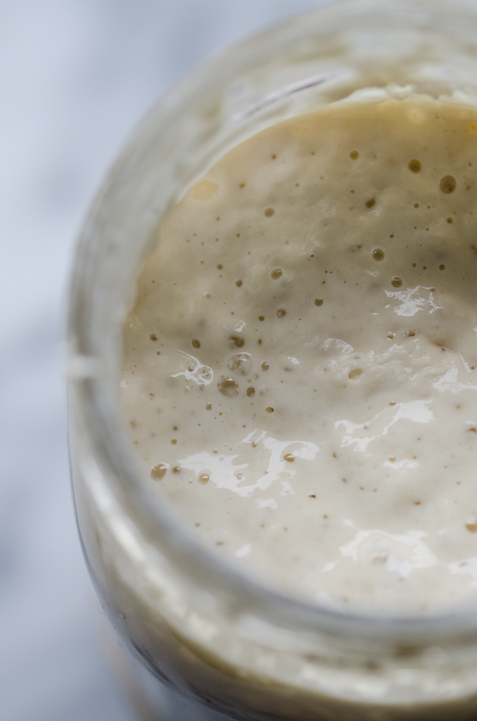A fed and active sourdough starter.