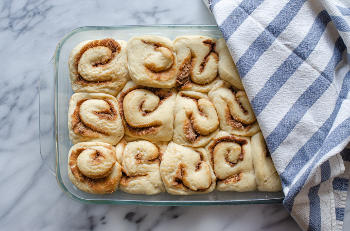 The risen sourdough cinnamon rolls in the pan with a tea towel partially covering them.