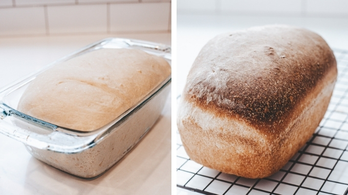 A loaf a bread baked with a starter that's been in the fridge for 1 week.