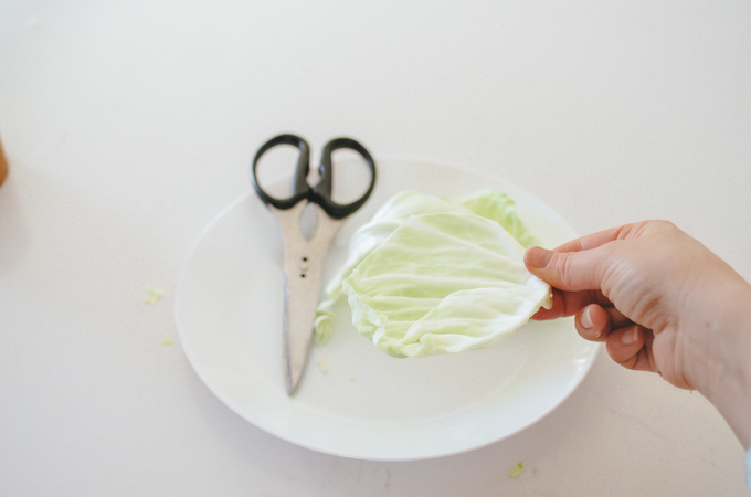 Cutting out a round of cabbage leaf for making sauerkraut.
