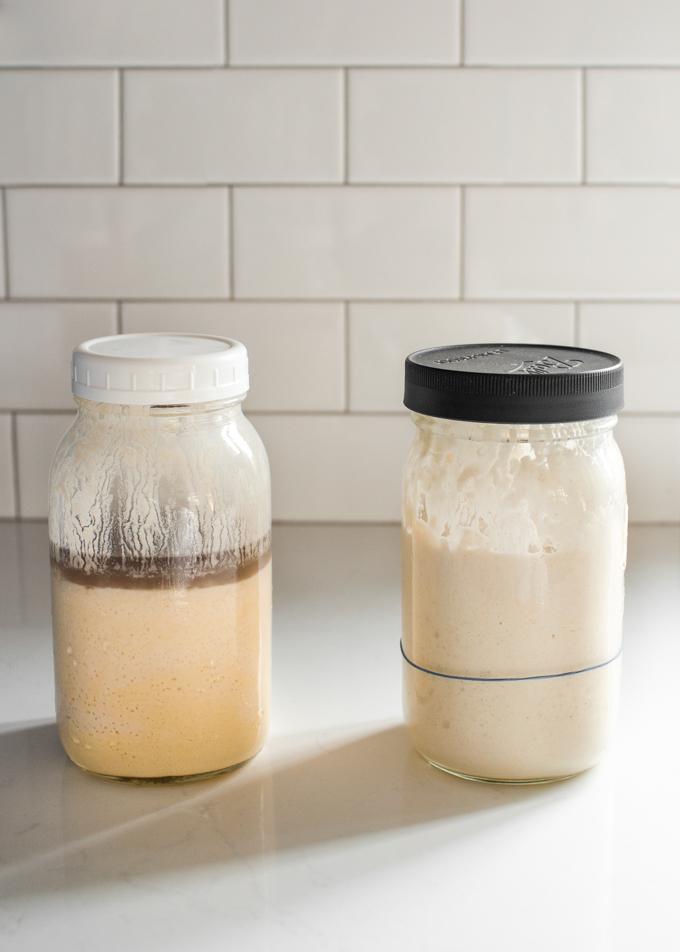 Hooch at the top of a sourdough starter vs a healthy sourdough starter.
